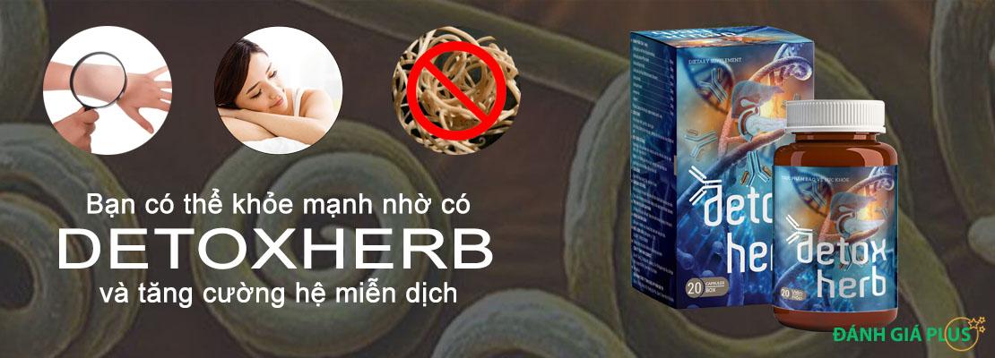 [Review] Đánh giá Detoxherb loại bỏ ký sinh trùng khỏi cơ thể