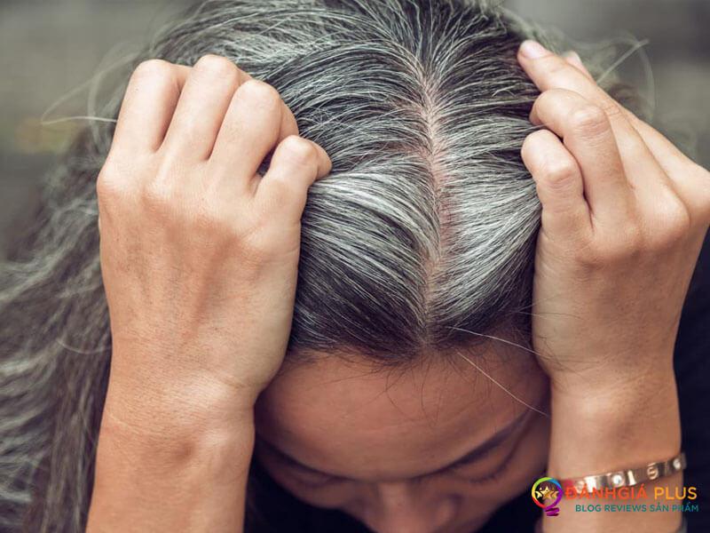 Dầu gội chữa bạc tóc cho người già